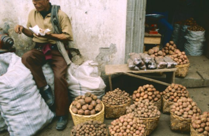 Guatemala potatoes