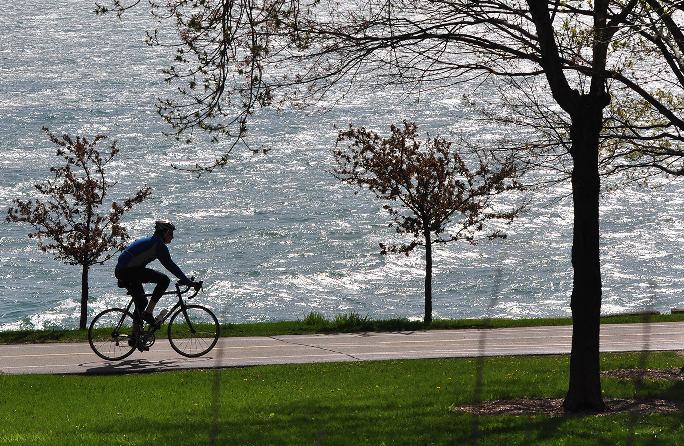 Chicago Lakefront Breeze